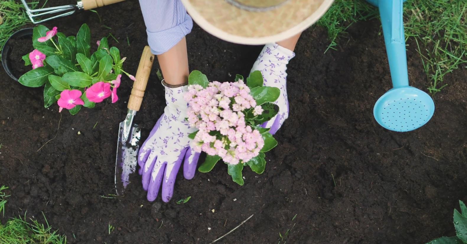 kertészkedés fogyni